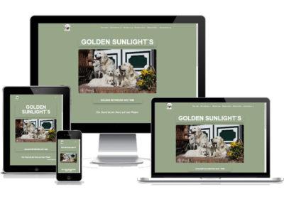 Webdesign Retriever Joconcept